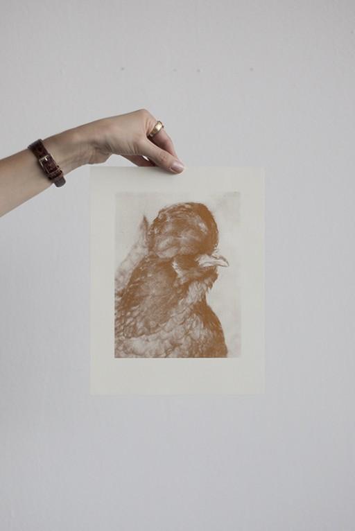 Maria-Sophie Geisler Pullum